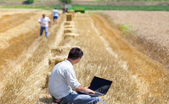 浅橙科技:金融科技,如何服务于乡村振兴?